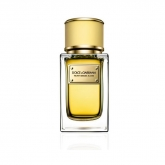 Dolce And Gabbana Velvet Mimosa Bloom Eau De Parfum Vaporisateur 150ml