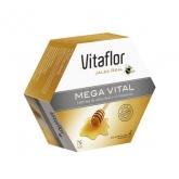 Vitaflor Mega Vital 20 Viales 200ml
